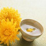 街コンレポート_日本酒に菊の花びらが浮いています