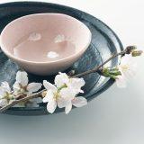 街コンレポート_日本酒に桜の花びらが浮いています