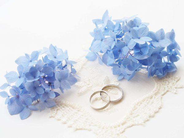 街コンレポート_紫陽花と結婚指輪